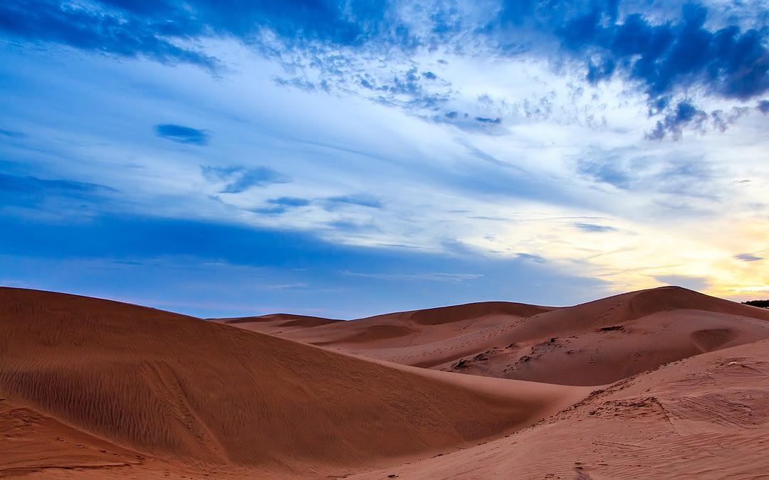 Relax in desert Safari (from Marrakech)